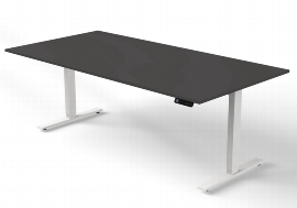 Tisch 200x100 -119cm
